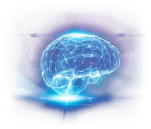 brain health and supplements