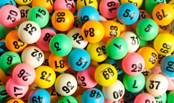 lotto dominator review