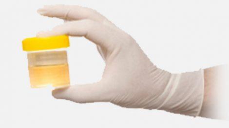 USING FAKE PEE FOR DRUG TEST