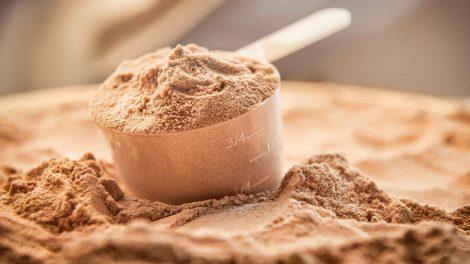protein powder online