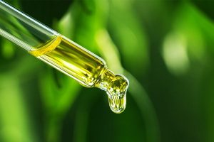 Buy CBD Oil – Important to Keep in Mind